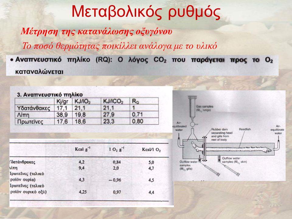 Μεταβολικός ρυθμός Μέτρηση της κατανάλωσης οξυγόνου