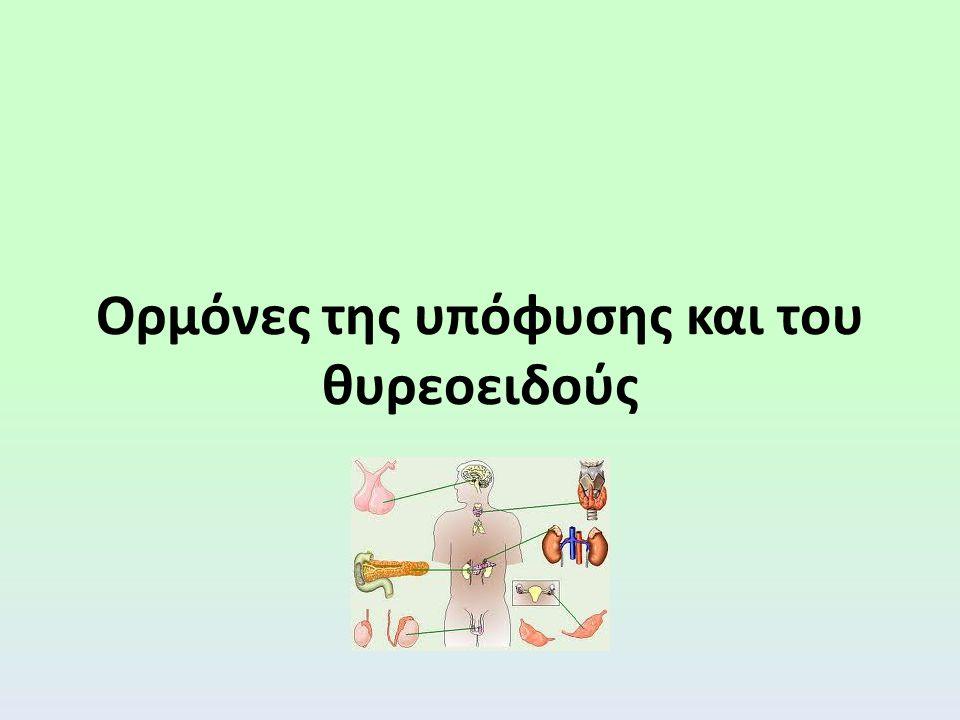 Ορμόνες της υπόφυσης και του θυρεοειδούς