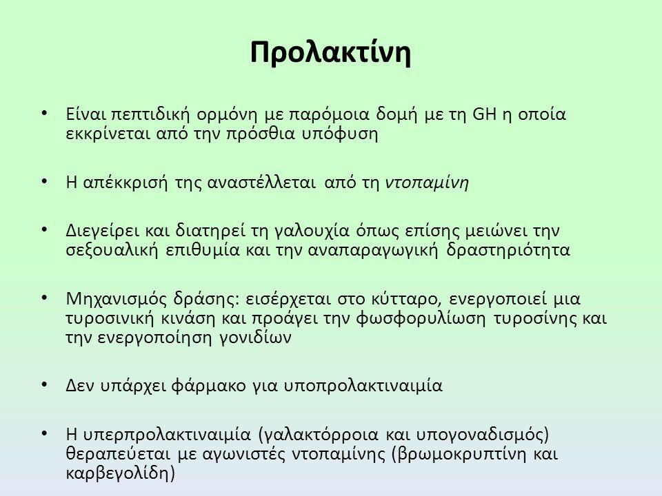 Προλακτίνη Είναι πεπτιδική ορμόνη με παρόμοια δομή με τη GH η οποία εκκρίνεται από την πρόσθια υπόφυση.