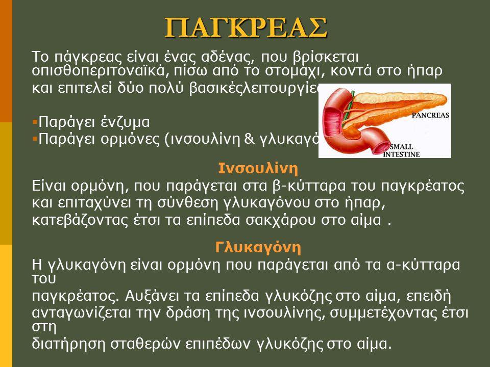 ΠΑΓΚΡΕΑΣ Το πάγκρεας είναι ένας αδένας, που βρίσκεται οπισθοπεριτοναϊκά, πίσω από το στομάχι, κοντά στο ήπαρ.
