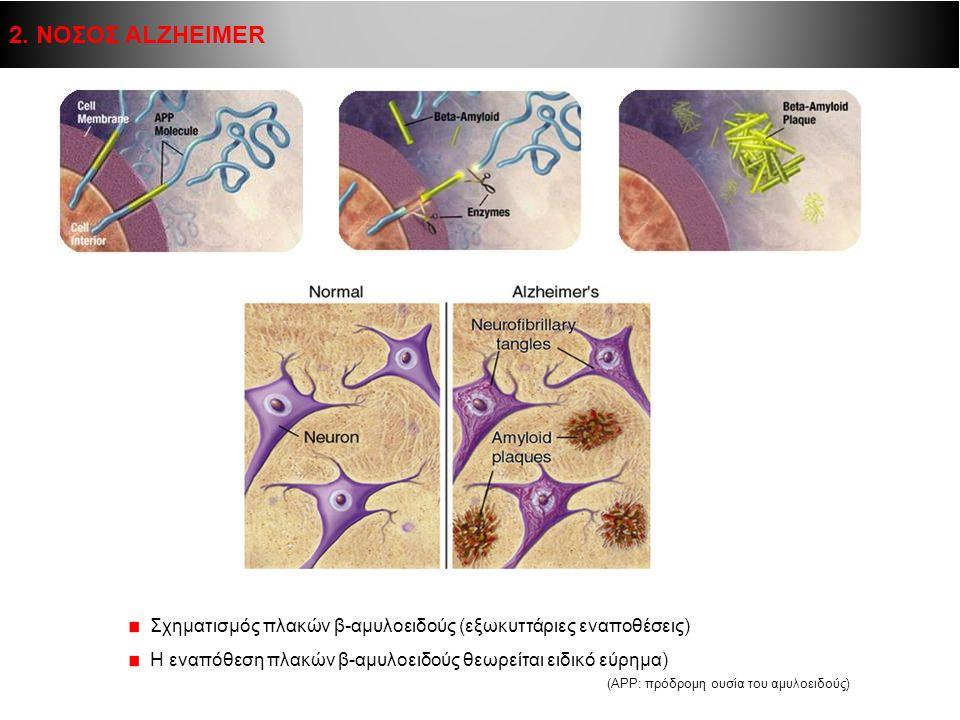 2. ΝΟΣΟΣ ALZHEIMER Β-αμυλοειδές  τμήμα μεγαλύτερης διαμεμβρανικής πρωτεΐνης (APP)