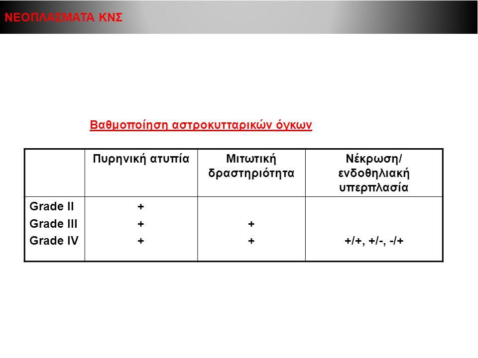 Μιτωτική δραστηριότητα Νέκρωση/ ενδοθηλιακή υπερπλασία