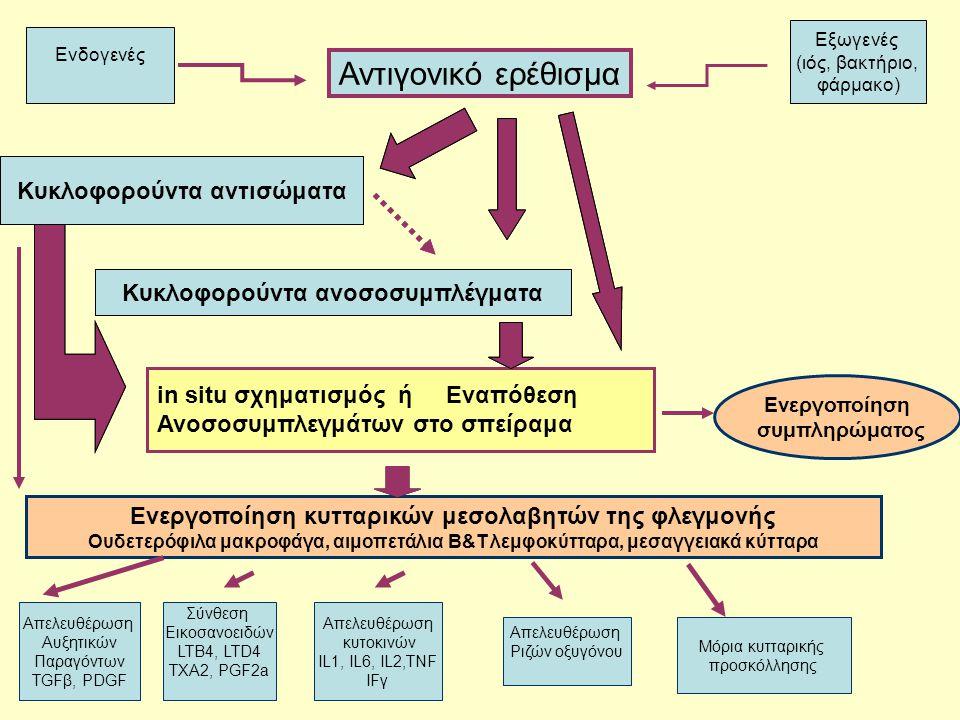 Αντιγονικό ερέθισμα Κυκλοφορούντα αντισώματα Κυκλοφορούντα αντισώματα