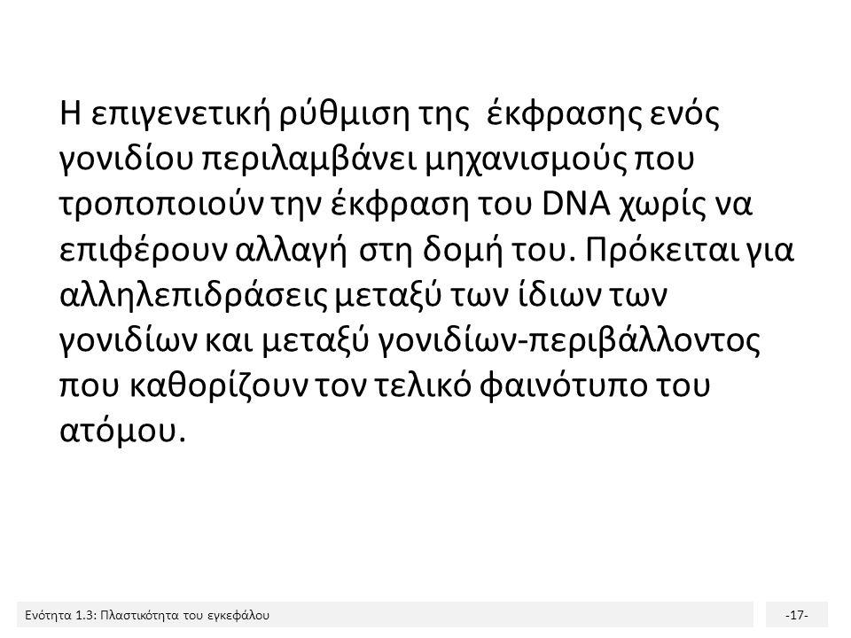 Η επιγενετική ρύθμιση της έκφρασης ενός γονιδίου περιλαμβάνει μηχανισμούς που τροποποιούν την έκφραση του DNA χωρίς να επιφέρουν αλλαγή στη δομή του.