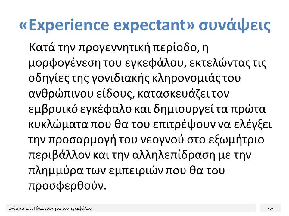 «Εxperience expectant» συνάψεις