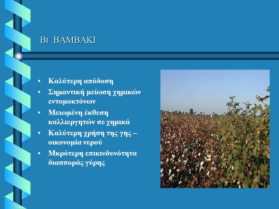 Bt ΒΑΜΒΑΚΙ Καλύτερη απόδοση Σημαντική μείωση χημικών εντομοκτόνων