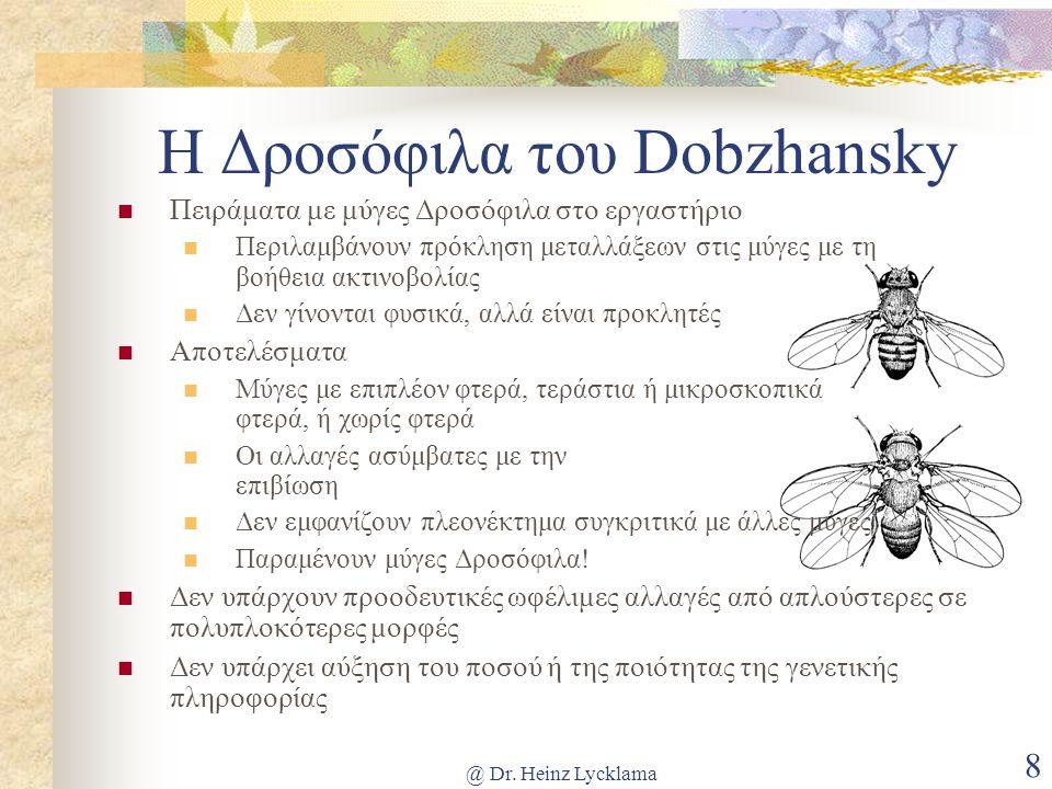 Η Δροσόφιλα του Dobzhansky