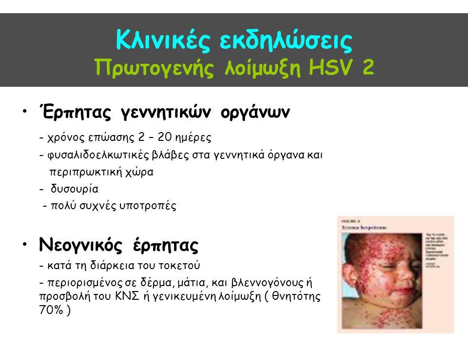 Κλινικές εκδηλώσεις Πρωτογενής λοίμωξη HSV 2