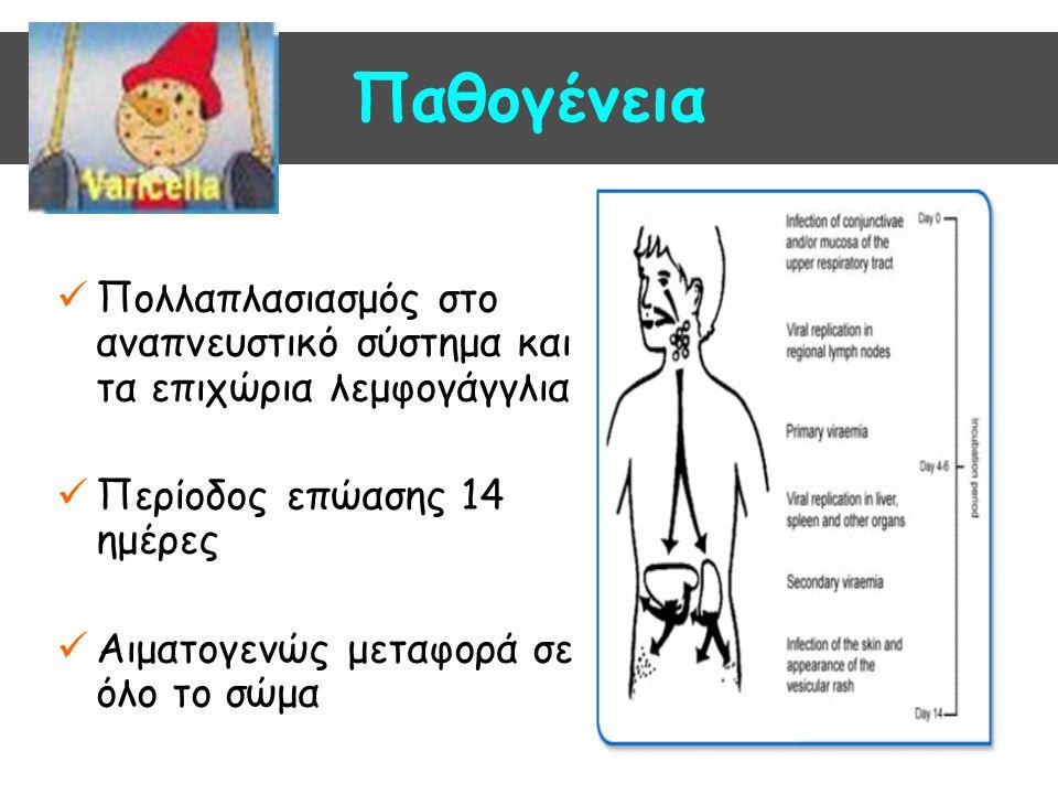 Παθογένεια Πολλαπλασιασμός στο αναπνευστικό σύστημα και τα επιχώρια λεμφογάγγλια. Περίοδος επώασης 14 ημέρες.