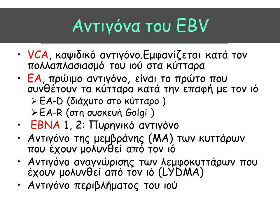 Aντιγόνα του EBV VCA, καψιδικό αντιγόνο.Εμφανίζεται κατά τον πολλαπλασιασμό του ιού στα κύτταρα.