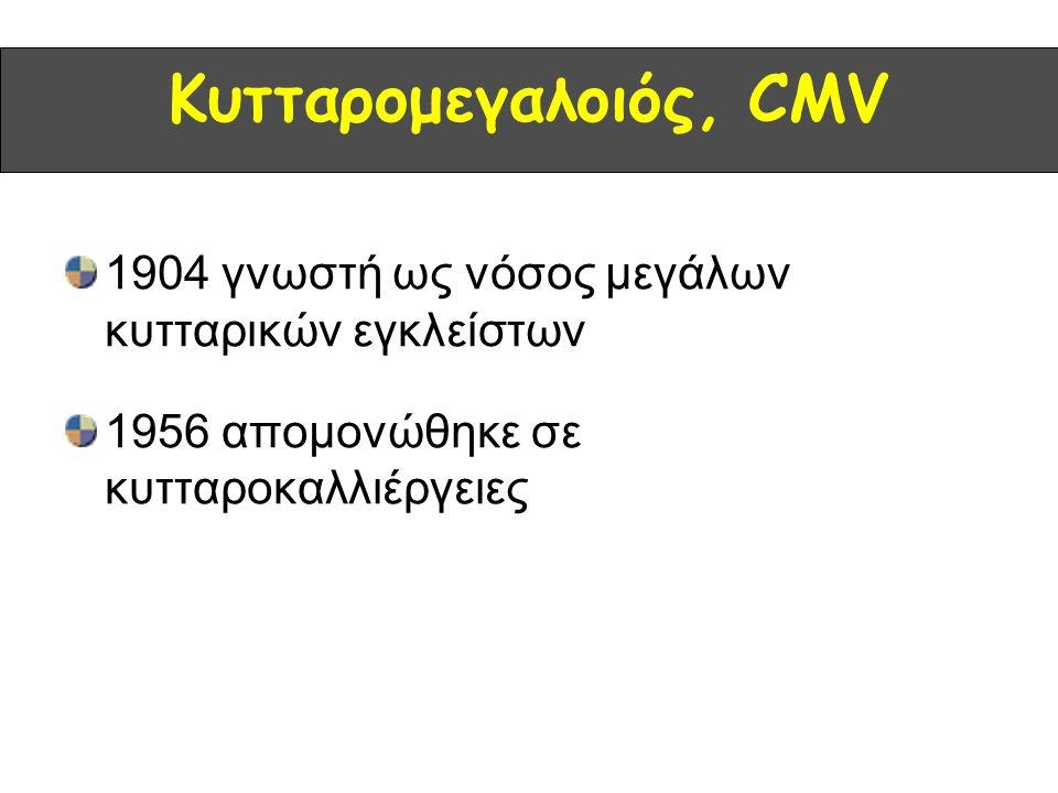 Κυτταρομεγαλοιός, CMV 1904 γνωστή ως νόσος μεγάλων κυτταρικών εγκλείστων.