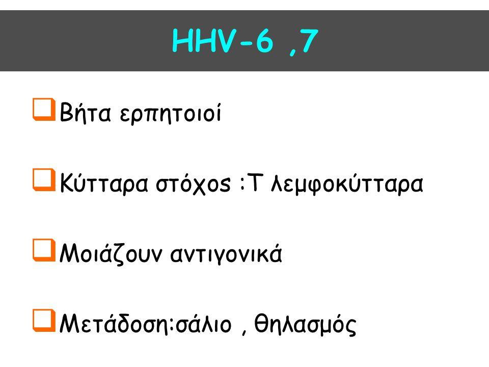 HHV-6 ,7 Βήτα ερπητοιοί Κύτταρα στόχοs :T λεμφοκύτταρα