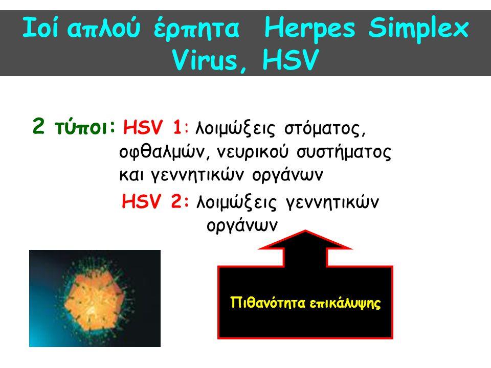 Ιοί απλού έρπητα Herpes Simplex Virus, HSV