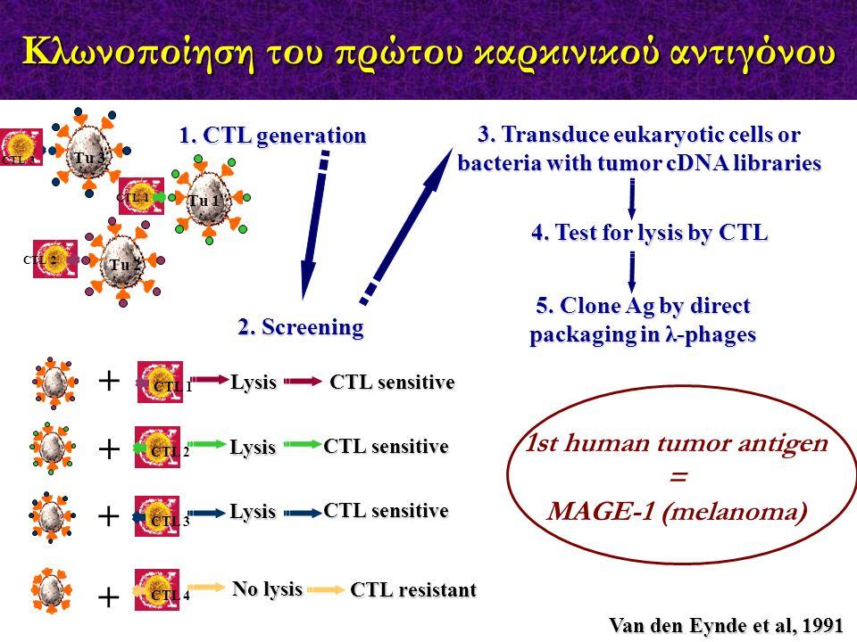 Κλωνοποίηση του πρώτου καρκινικού αντιγόνου