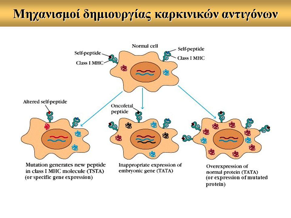 Μηχανισμοί δημιουργίας καρκινικών αντιγόνων