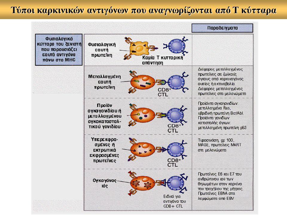 Τύποι καρκινικών αντιγόνων που αναγνωρίζονται από Τ κύτταρα