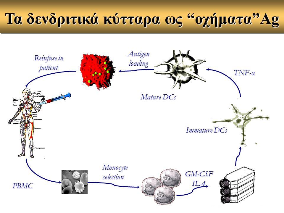 Τα δενδριτικά κύτταρα ως οχήματα Ag