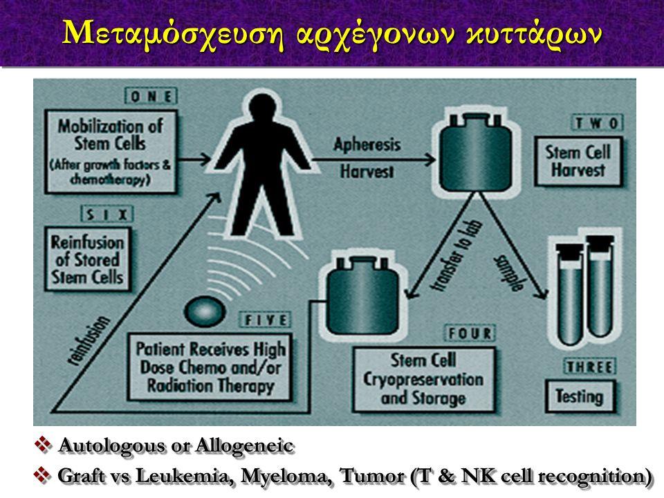 Μεταμόσχευση αρχέγονων κυττάρων