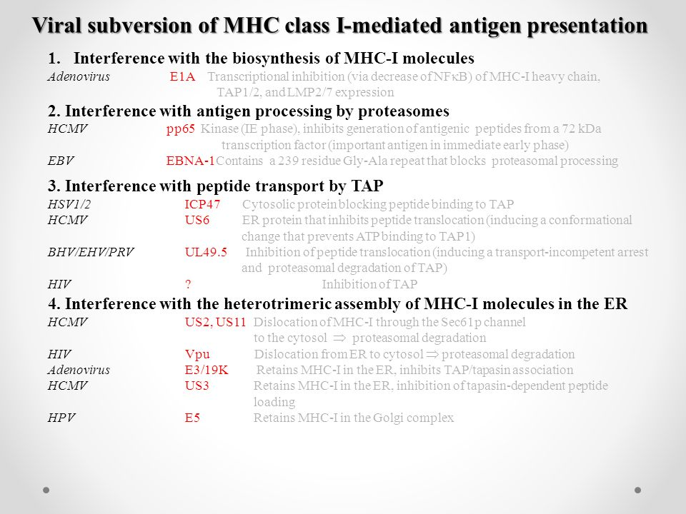 Viral subversion of MHC class I-mediated antigen presentation