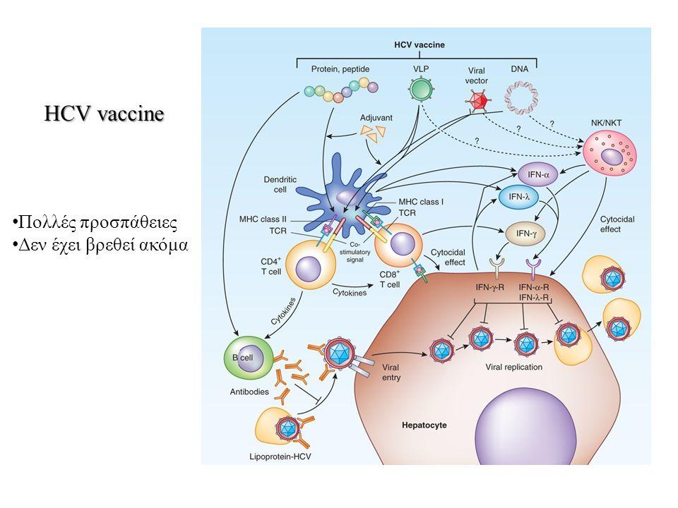 HCV vaccine Πολλές προσπάθειες Δεν έχει βρεθεί ακόμα