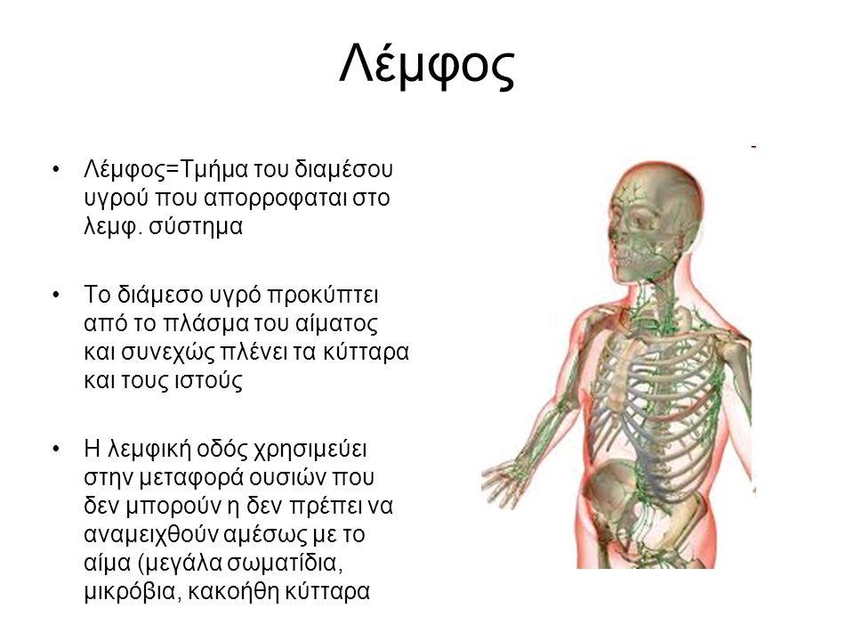 Λέμφος Λέμφος=Τμήμα του διαμέσου υγρού που απορροφαται στο λεμφ. σύστημα.