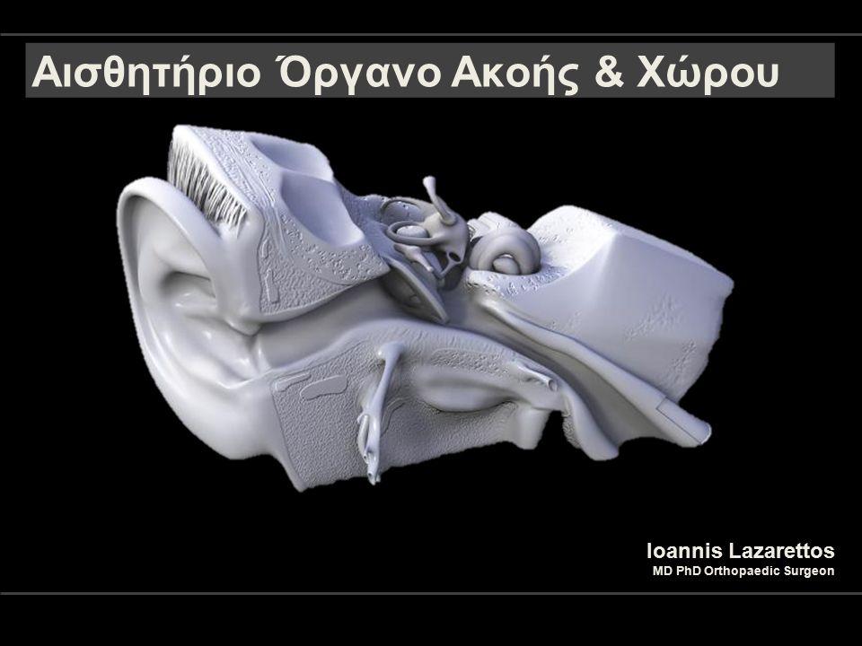 Αισθητήριο Όργανο Ακοής & Χώρου