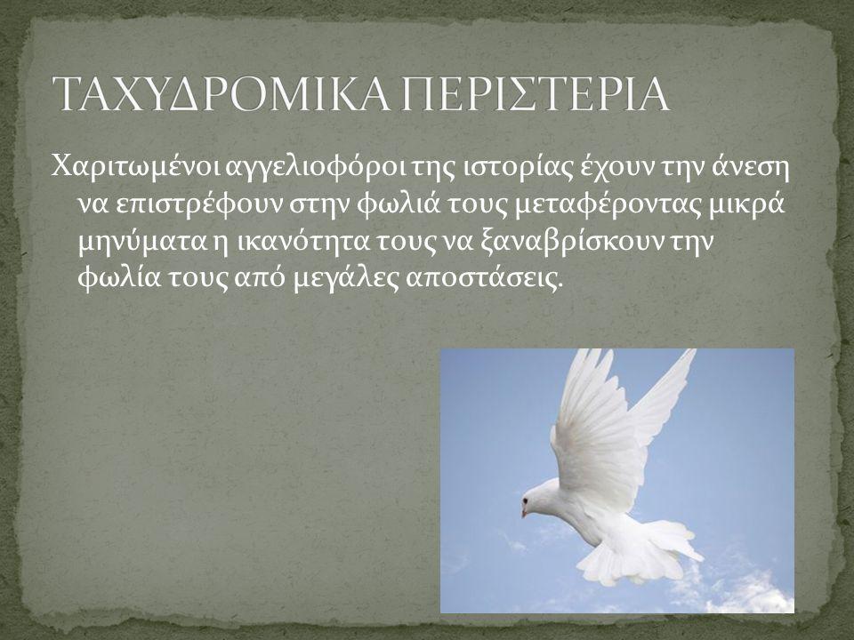 ΤΑΧΥΔΡΟΜΙΚΑ ΠΕΡΙΣΤΕΡΙΑ