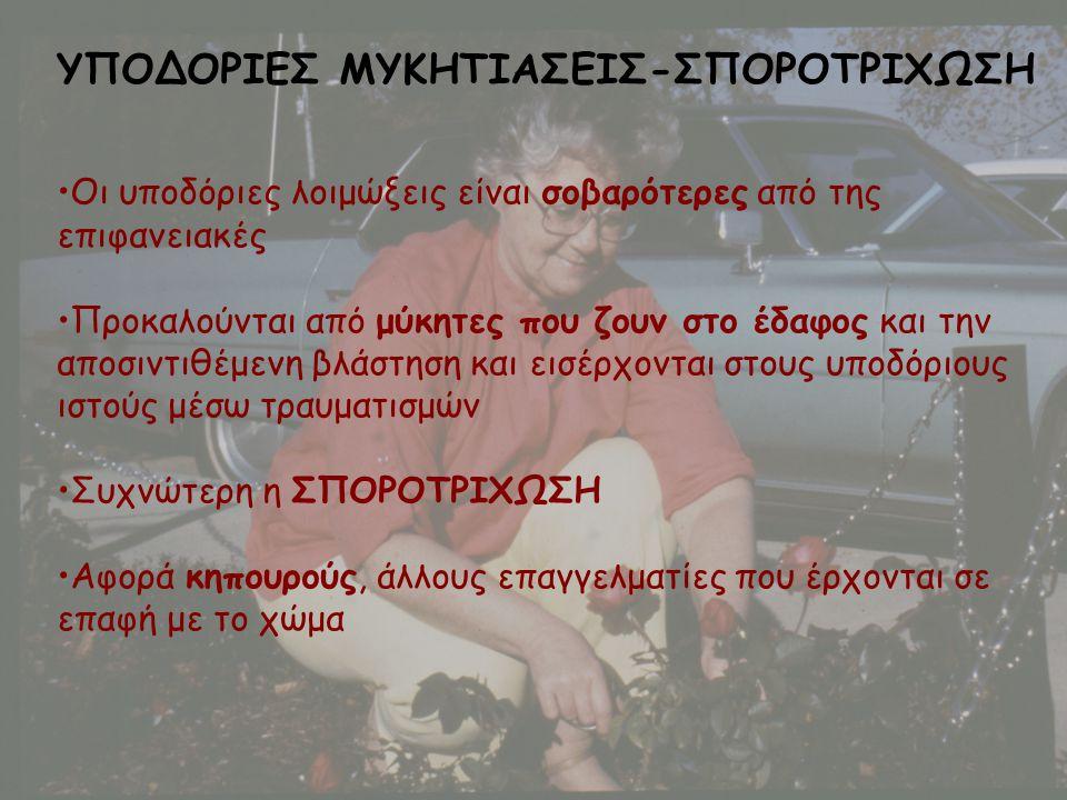 ΥΠΟΔΟΡΙΕΣ ΜΥΚΗΤΙΑΣΕΙΣ-ΣΠΟΡΟΤΡΙΧΩΣΗ