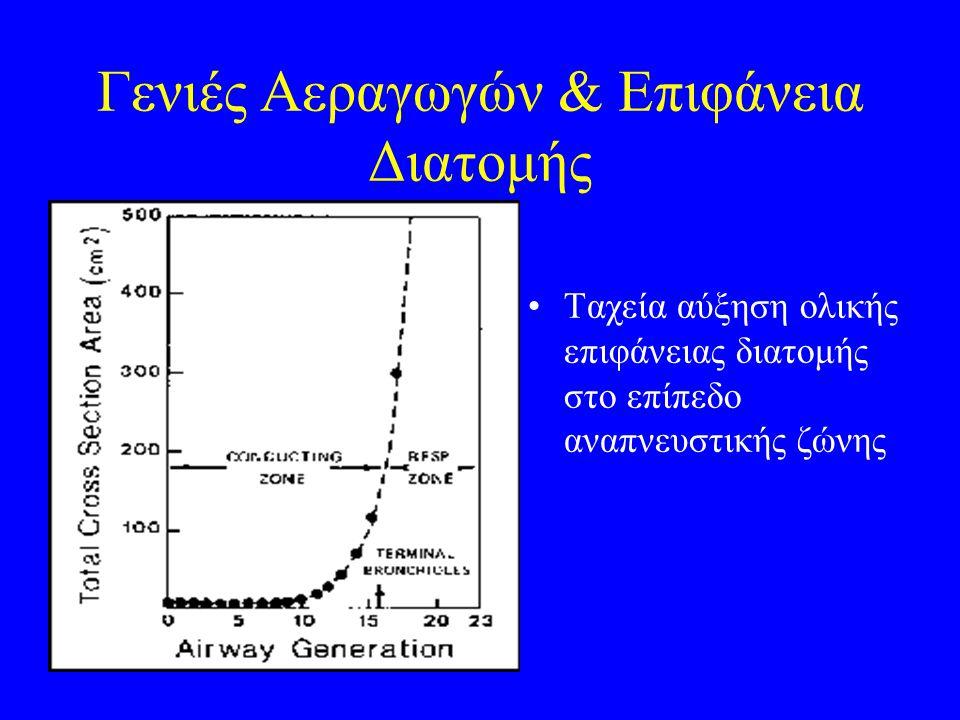 Γενιές Αεραγωγών & Επιφάνεια Διατομής