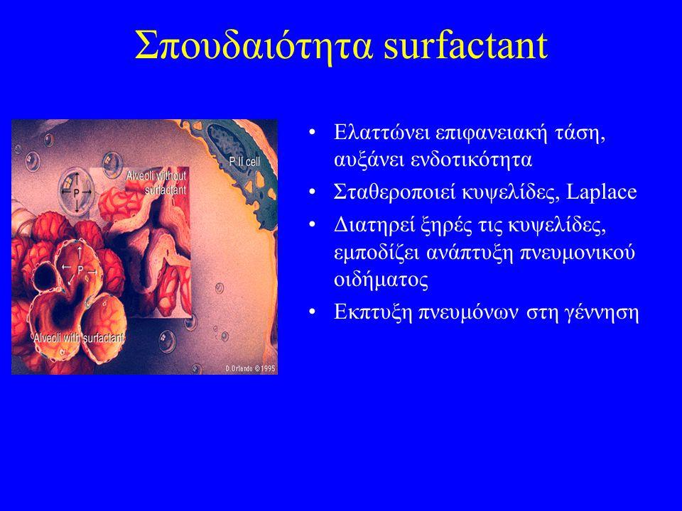 Σπουδαιότητα surfactant