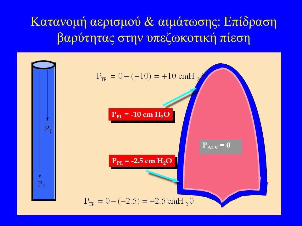Κατανομή αερισμού & αιμάτωσης: Επίδραση βαρύτητας στην υπεζωκοτική πίεση