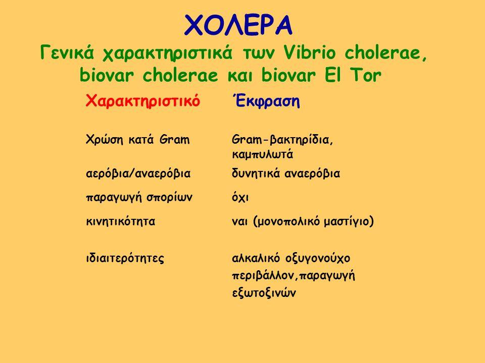 ΧΟΛΕΡΑ Γενικά χαρακτηριστικά των Vibrio cholerae,