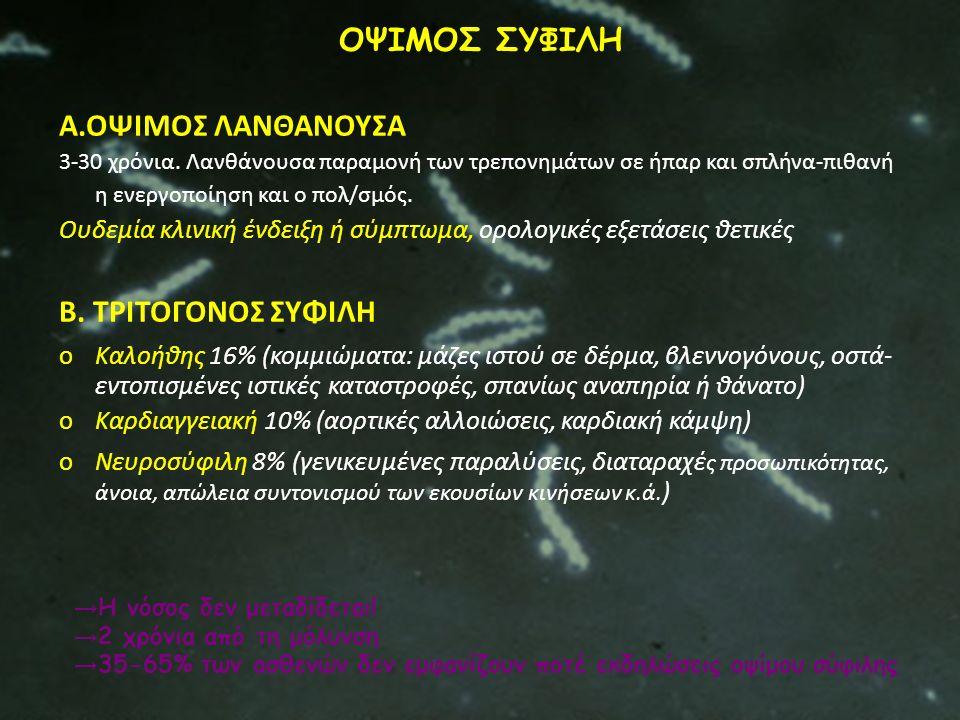 ΟΨΙΜΟΣ ΣΥΦΙΛΗ Α.ΟΨΙΜΟΣ ΛΑΝΘΑΝΟΥΣΑ Β. ΤΡΙΤΟΓΟΝΟΣ ΣΥΦΙΛΗ