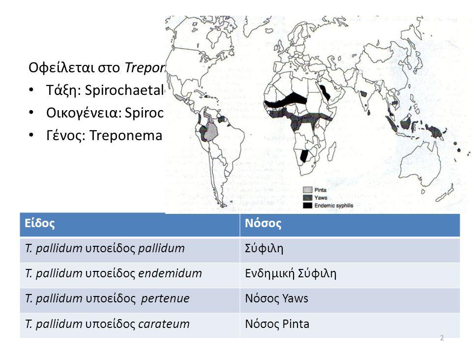 Οφείλεται στο Treponema pallidum subsp. pallidum Τάξη: Spirochaetales