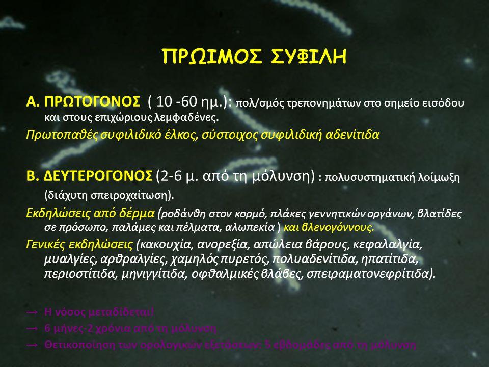 ΠΡΩΙΜΟΣ ΣΥΦΙΛΗ Α. ΠΡΩΤΟΓΟΝΟΣ ( 10 -60 ημ.): πολ/σμός τρεπονημάτων στο σημείο εισόδου και στους επιχώριους λεμφαδένες.