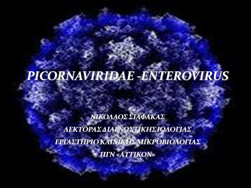 PICORNAVIRIDAE -ENTEROVIRUS