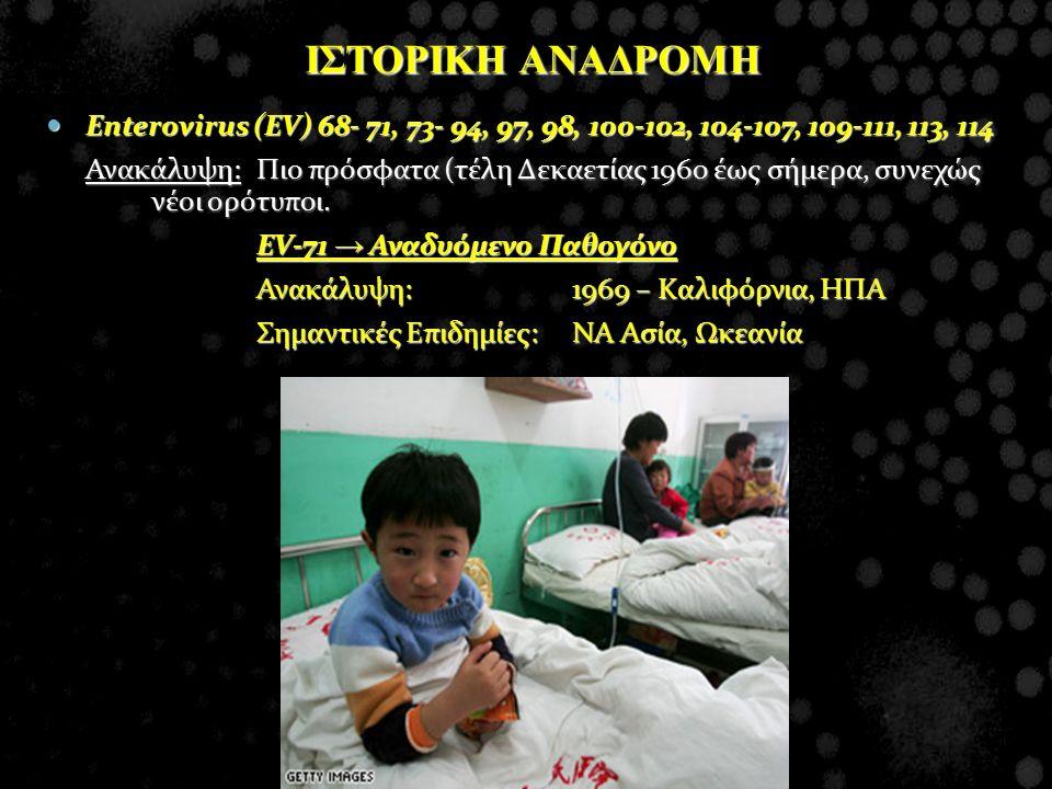 ΙΣΤΟΡΙΚΗ ΑΝΑΔΡΟΜΗ Enterovirus (EV) 68- 71, 73- 94, 97, 98, 100-102, 104-107, 109-111, 113, 114.