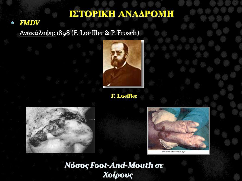 Νόσος Foot-And-Mouth σε Χοίρους