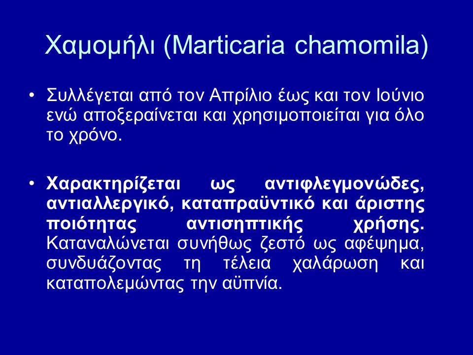 Χαμομήλι (Marticaria chamomila)