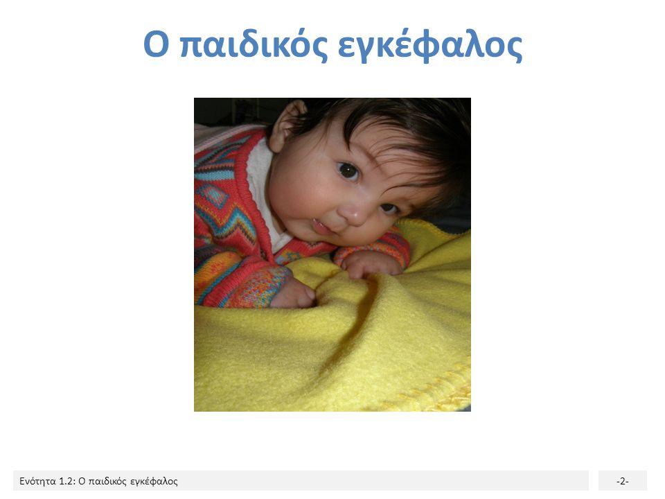 Ο παιδικός εγκέφαλος
