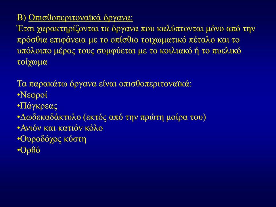 Β) Οπισθοπεριτοναϊκά όργανα: