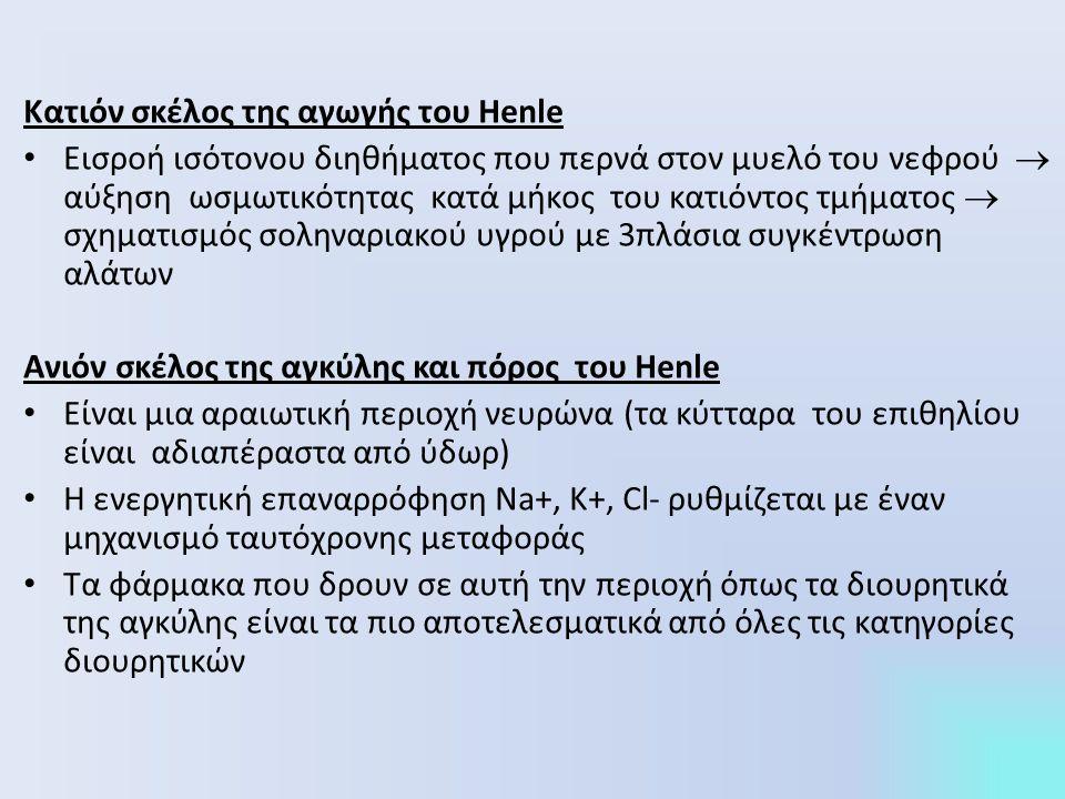 Κατιόν σκέλος της αγωγής του Henle