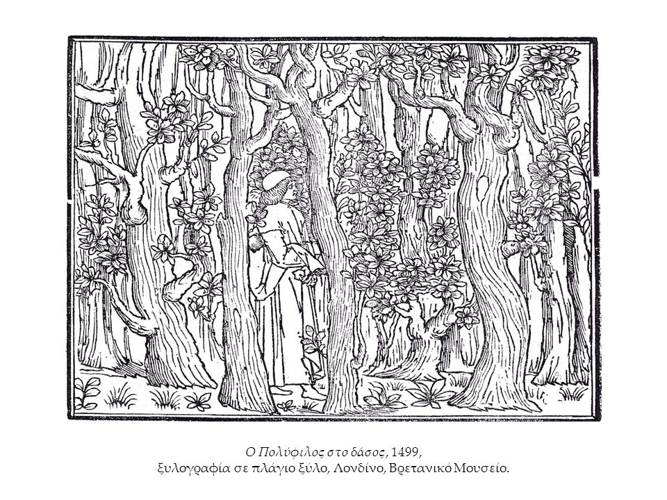Ο Πολύφιλος στο δάσος, 1499, ξυλογραφία σε πλάγιο ξύλο, Λονδίνο, Βρετανικό Μουσείο.