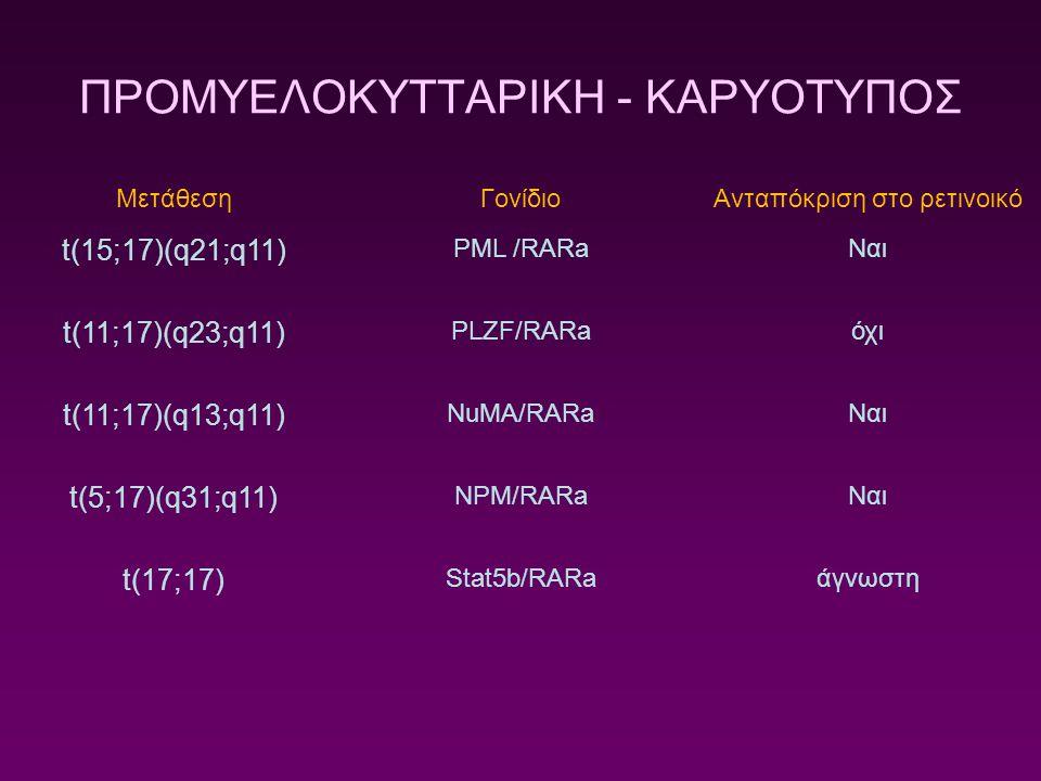 ΠΡΟΜΥΕΛΟΚΥΤΤΑΡΙΚΗ - ΚΑΡΥΟΤΥΠΟΣ