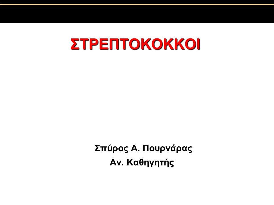 ΣΤΡΕΠΤΟΚΟΚΚΟΙ Σπύρος A. Πουρνάρας Αν. Καθηγητής