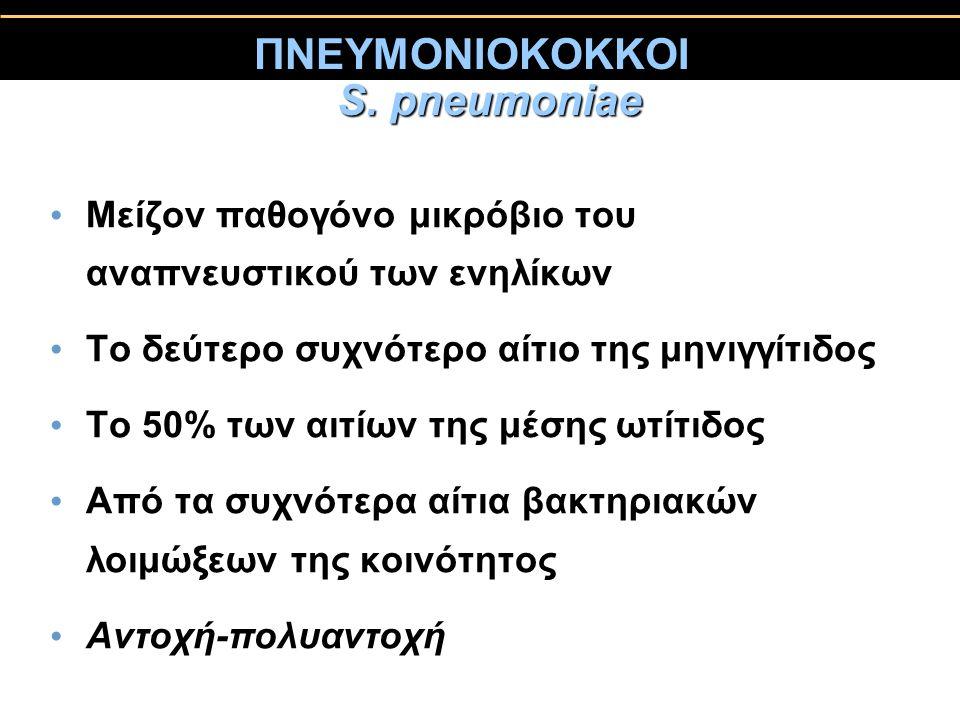 ΠΝΕΥΜΟΝΙΟΚΟΚΚΟΙ S. pneumoniae