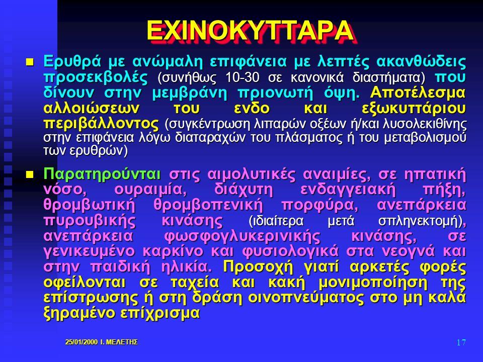 ΕΧΙΝΟΚΥΤΤΑΡΑ