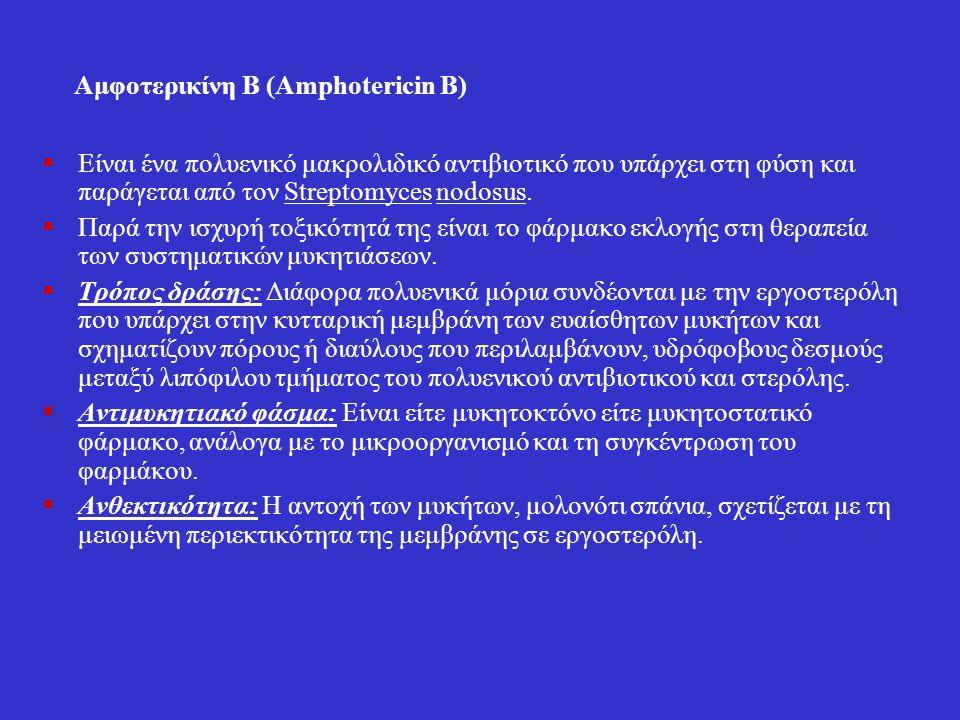 Αμφοτερικίνη Β (Amphotericin Β)