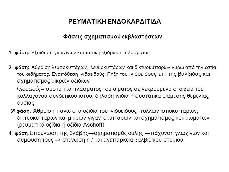 ΡΕΥΜΑΤΙΚΗ ΕΝΔΟΚΑΡΔΙΤΙΔΑ