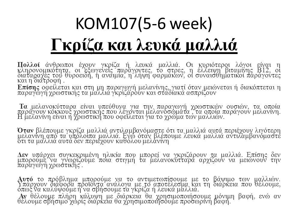 KOM107(5-6 week) Γκρίζα και λευκά μαλλιά